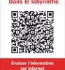 Livre d'Alexandre Serres : Dans le labyrinthe, l'évaluation de l'information sur Internet